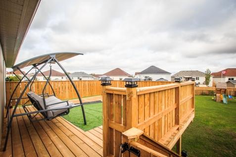 backyard (1 of 1)-2