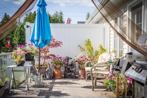 backyard (1 of 1)-7