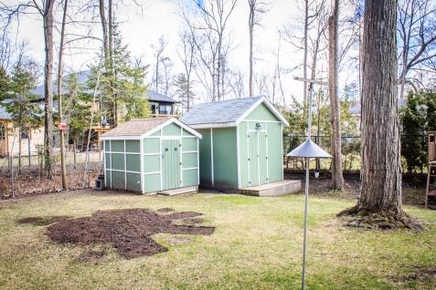 backyard (1 of 1)-5